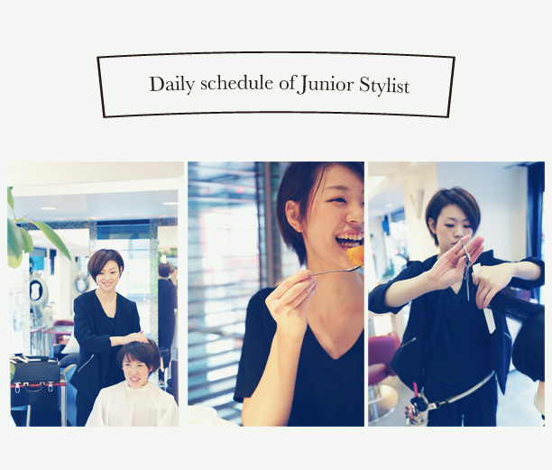 Daily schedule of Junior Stylist